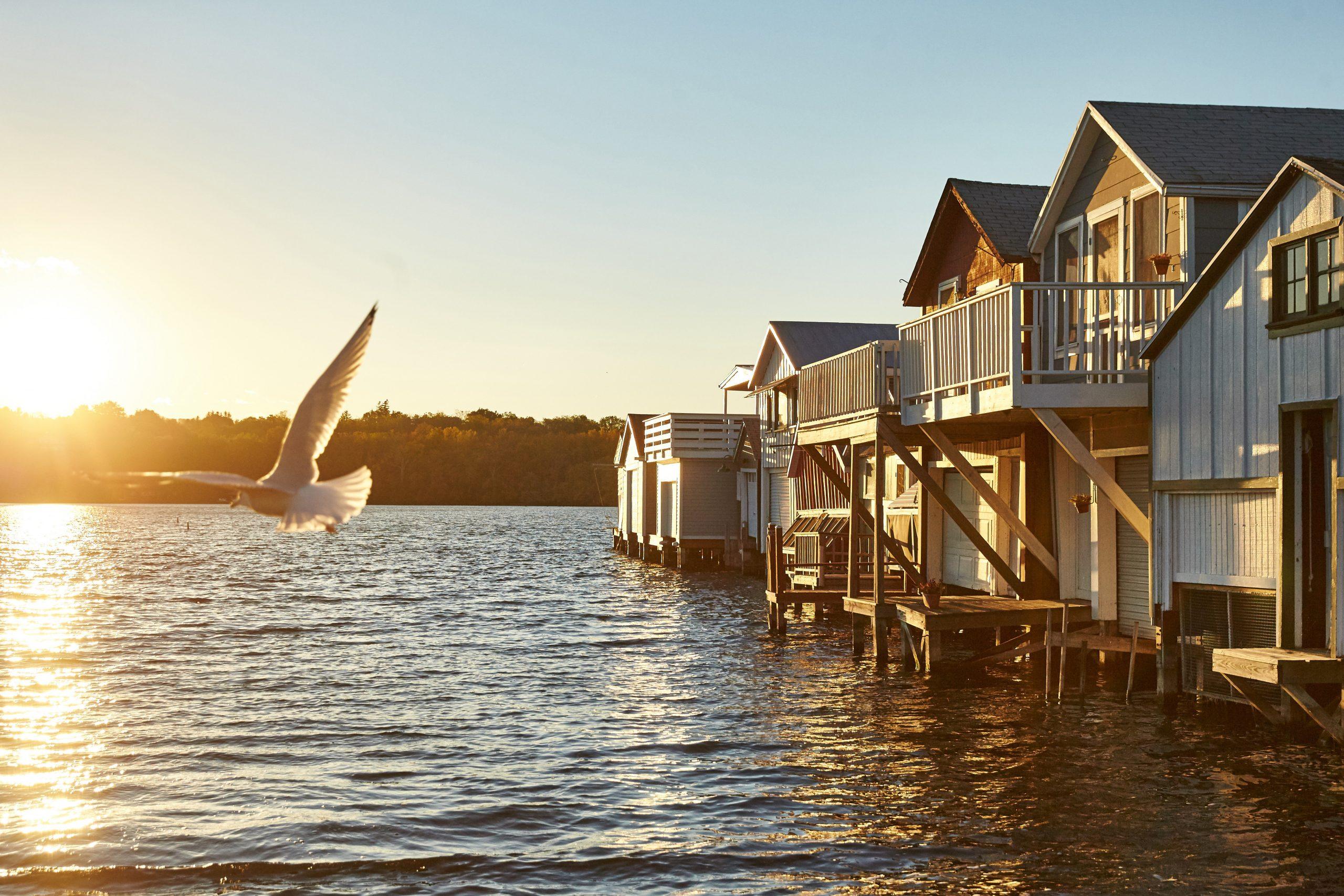 Daydream Sailing Canandaigua Boathouses